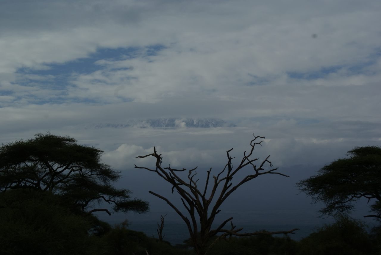 Mt. Kilimanjaro - Amboseli Nat. Park