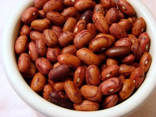 Vermont Cranberry beans