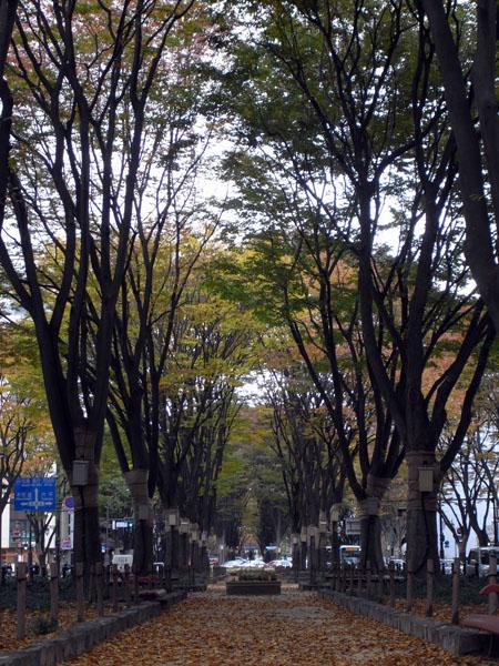 1112仙台_005