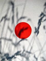 WATT http://www.wattmagazine.it/, 13