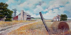 Hill Country Homestead - 18x36