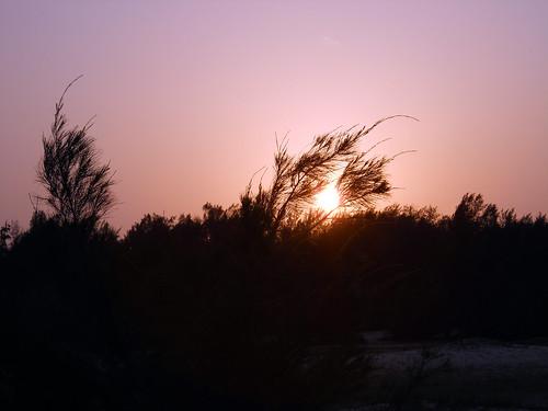 Sunset @ Manatkadu, pointpetro II
