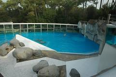 Eisbärenanlage im Zoo de La Palmyre