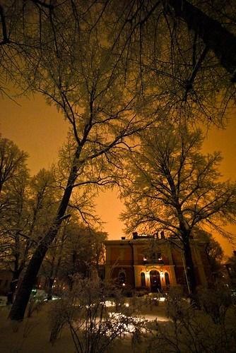 Snow Dust Winter Glow