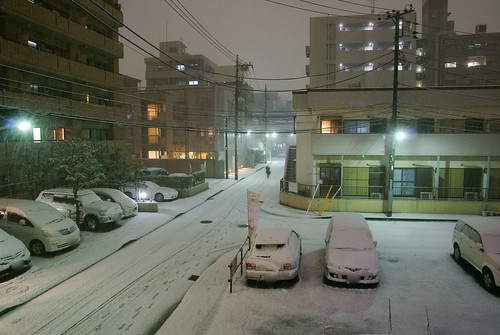 Snow in Tokyo 2010