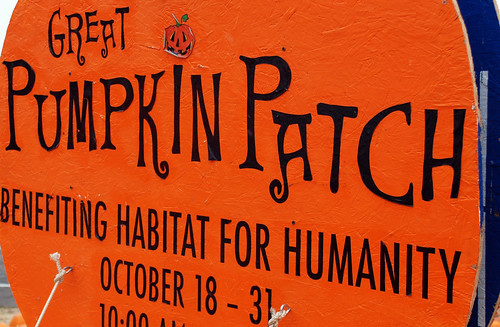 Great Pumpkin Patch