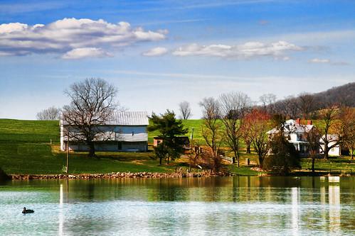 The Farm on Silver Lake
