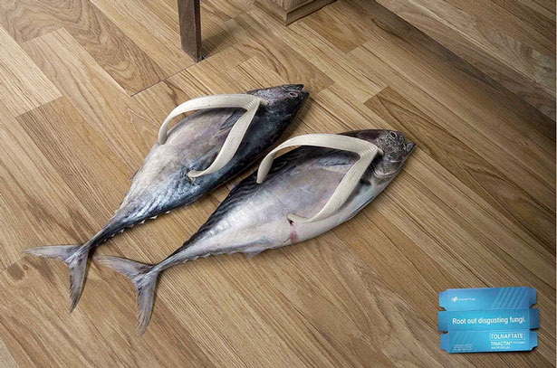 18_fish
