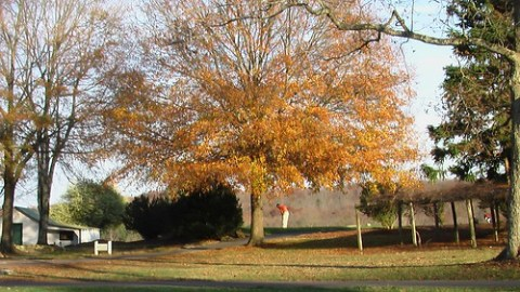 Autumn at Tot Hill Golf Club