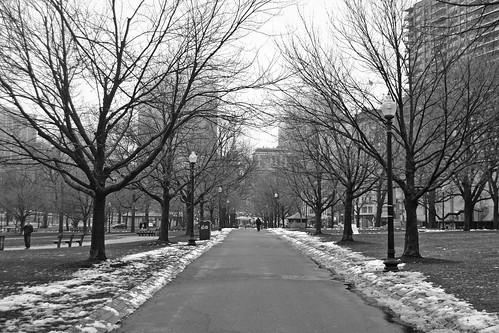 Boston Common (Boston)