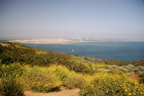 view from point loma