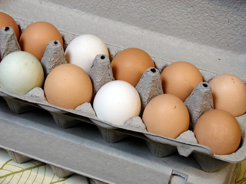 many-hued eggs