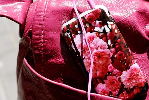 Wednesday: A bit too much Pink