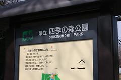 神奈川県立四季の森公園(Shikinomori park, Japan)