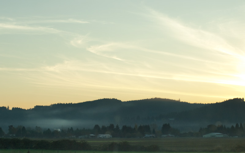Saginaw Landscape
