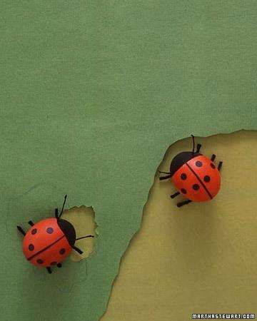 egg_ladybug_xl1