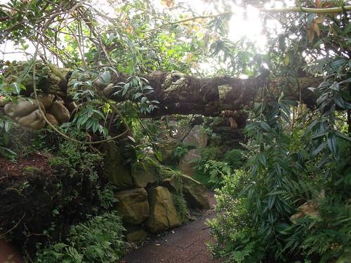 20090919 Edinburgh 20 Royal Botanic Garden 377