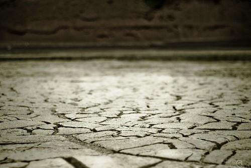 Dry!.