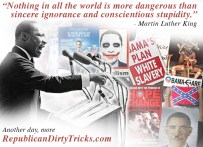 MLK nothing in all the world is more dangerous than sincere ignorance and conscientious stupidity Image