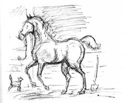 littlehorse5
