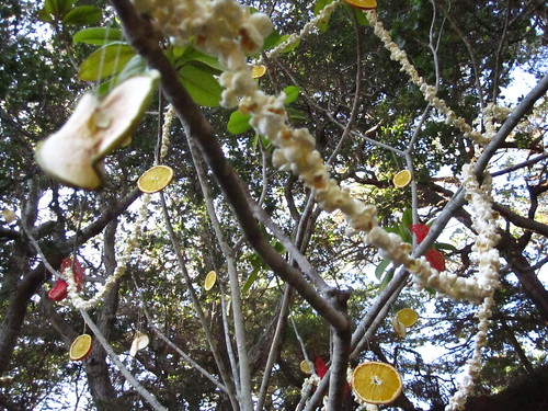 bird xmas tree 3