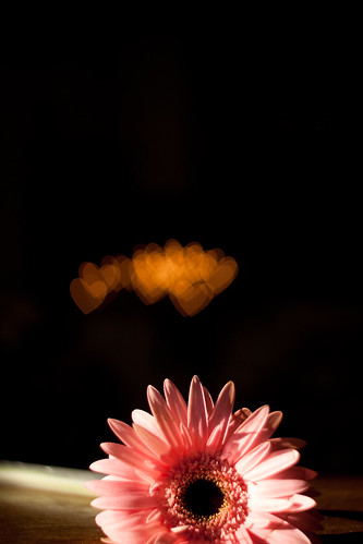 Flower Heart Bokeh