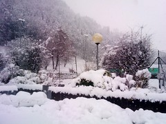 November-Schnee_01