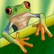 Grenouille - Frog