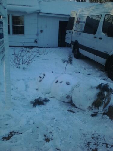 2009-12-08-snowman1