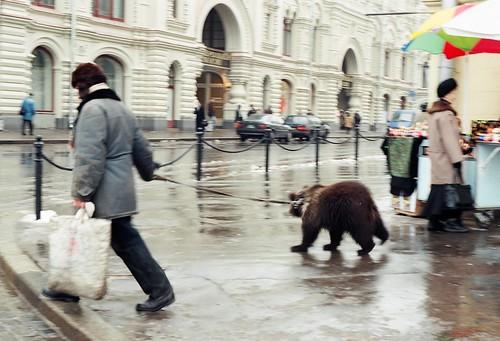 Man walking bear in Moscow