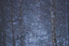 1/365 & 1/52 - Snow,