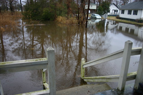 Elizabeth City - Flooded Front Yard - 11 AM