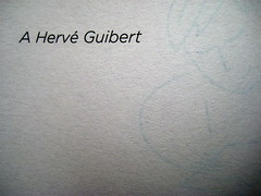 Chris Donner, Lettere dal mare, Einaudi Ragazzi 2010; [illustrazioni di Aurora Biancardi], verso dell'occhietto (part.)
