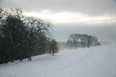 Levens Snow