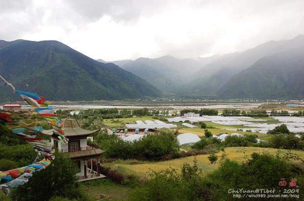 西藏林芝世界柏樹王園林14.jpg