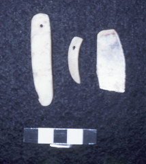 Pearl Shell Artifacts