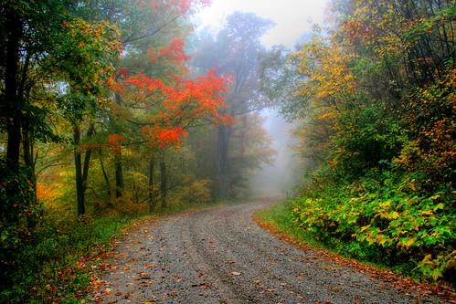 Autumns Misty Road