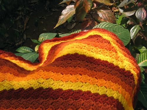 Orange covers