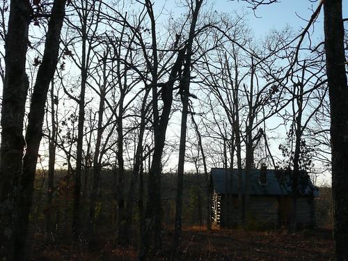 cabin, november 2009