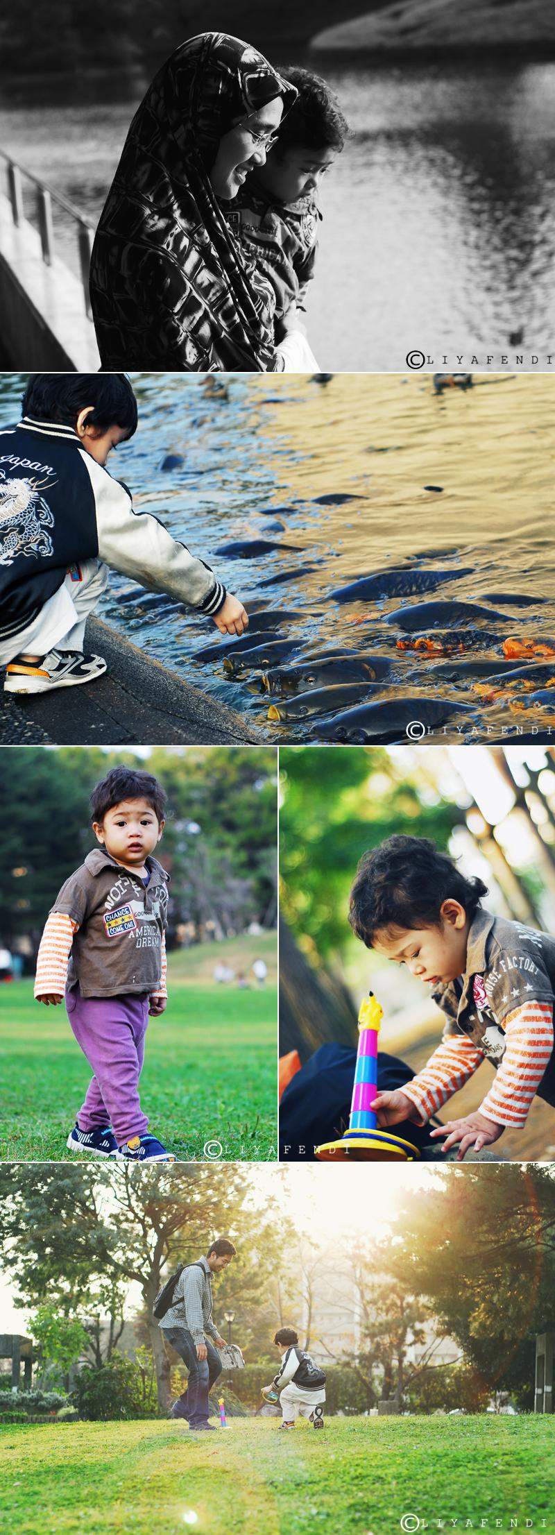 Mitsumi Park