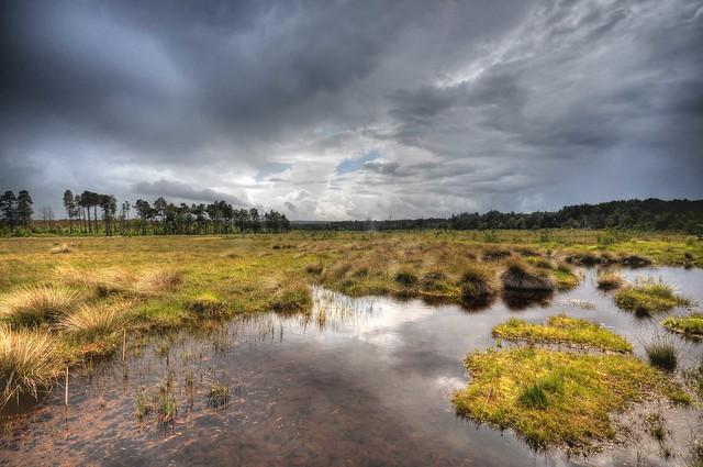 Marsh ToneMap stunning grey rain sun landscape photograph