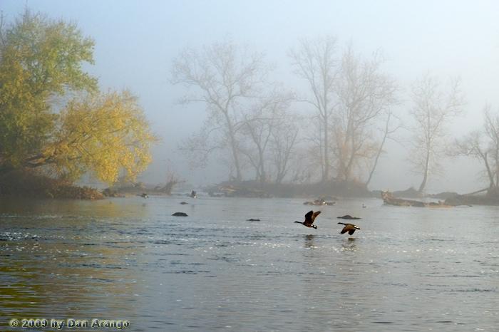 Foggy Approach