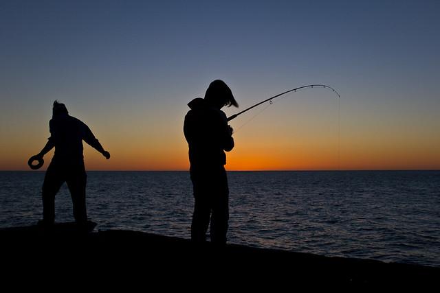 J50 / Silhouette : Pêche le long de la One Mile Jetty