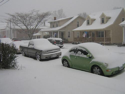 January 30 2010 Snow 002