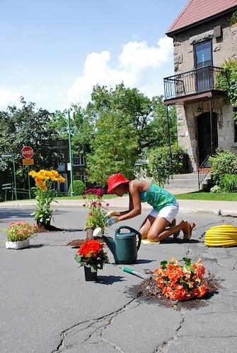 Flowers in potholes