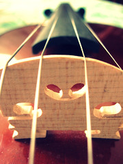 Violin's heart