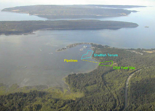 Deep Bay Aerial with sites