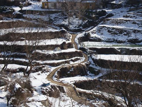 Tal im Winter II