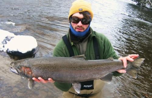 Salmon River Winter Steelheading