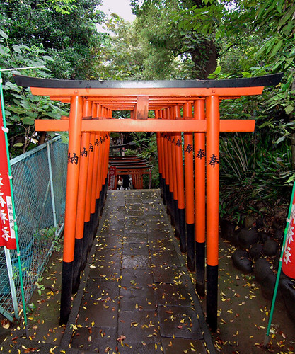 Ueno Park - Torii formation